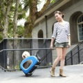 Blue 5-in-1 Pet Buggy 2