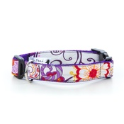 Pet Pooch Boutique - Peachick Dog Collar