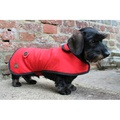 Red Waxed Cotton Dachshund Coat 3