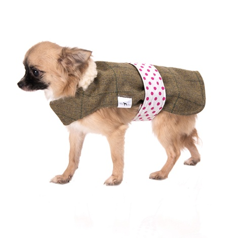 Caprice Tweed Dog Coat