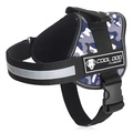 Cool Dog Camouflage in Camo Blue