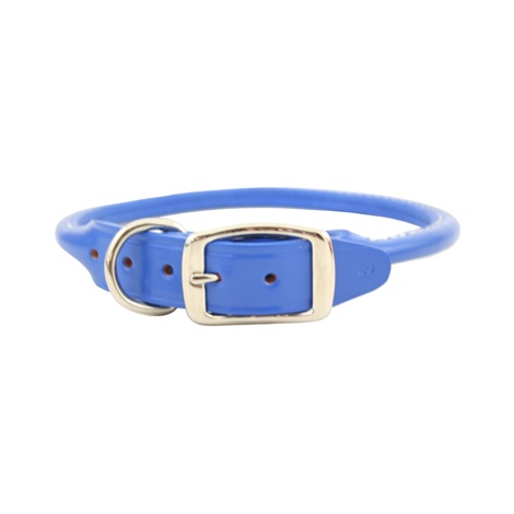 Rolled Leather Dog Collar – Royal Blue