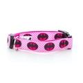 "Batgirl Dog Collar 1"" Width"