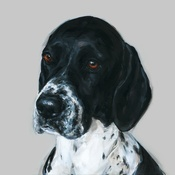 Paint My Dog  - Grace English Pointer Art Print