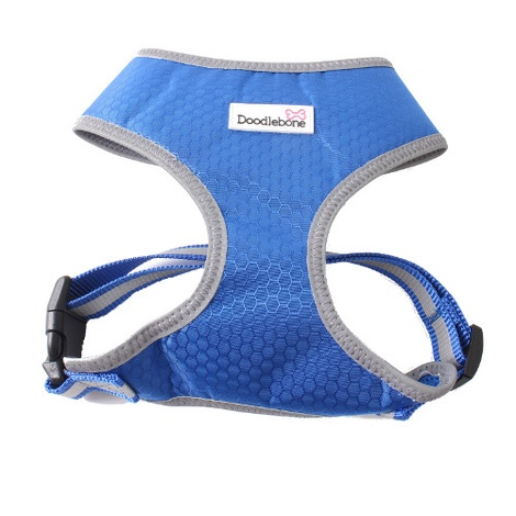 Toughie Harness - Blue