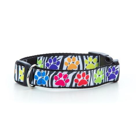 Paw Prints Dog Collar