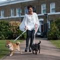 Blue Geo Classic Dog Lead 3