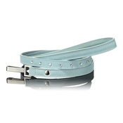 Paws with Opulence - Light Blue Swarovski Lead