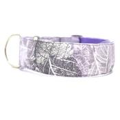 "Let Sleeping Dogs Lie - Alaska Sighthound Collar 1.5"" Width"