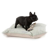 Mutts & Hounds - Mint Check Cotton Pillow Bed