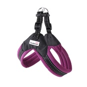 Doodlebone - Boomerang Harness - Purple