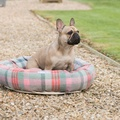 Macaroon Check Tweed Donut Dog Bed 2