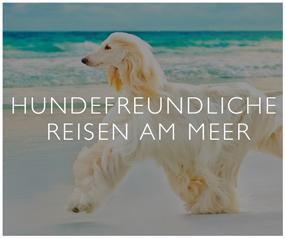 Hundenfreundliche Reisen Am Meer
