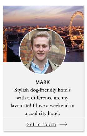 Mark - Pet Concierge