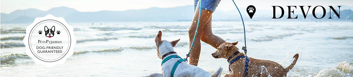 Devon Dog-friendly Hotels