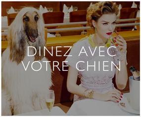 Dinez avec Votre Chien