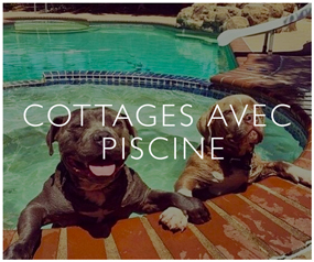 Cottages avec Piscine