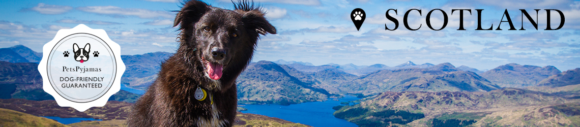 Dog-friendly Hotels & Accommodation in Scotland