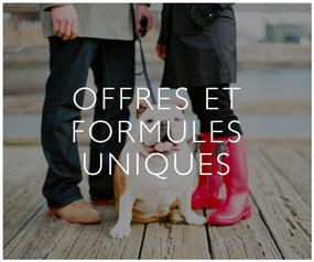 Offres Et Formules Uniques