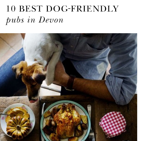 Top dog-friendly pubs in Devon