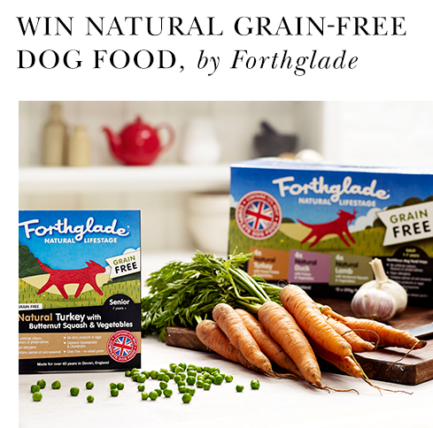 WIn Forthglade gog food