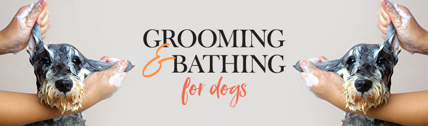 Grooming & Bathing